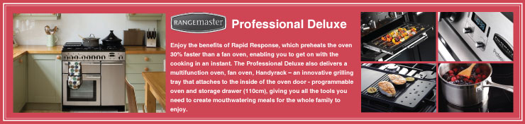 Professional Deluxe Induction