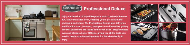 Professional Deluxe 100